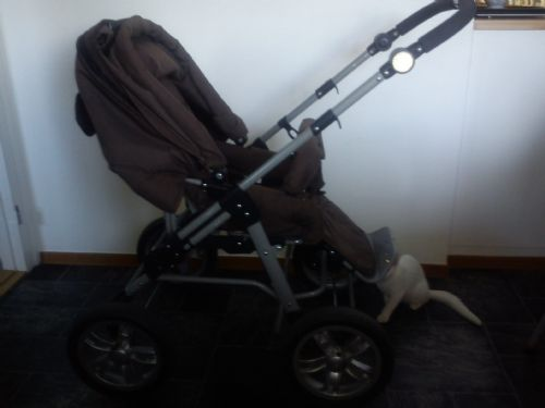 BabyTravel Barnvagn – Grizzly